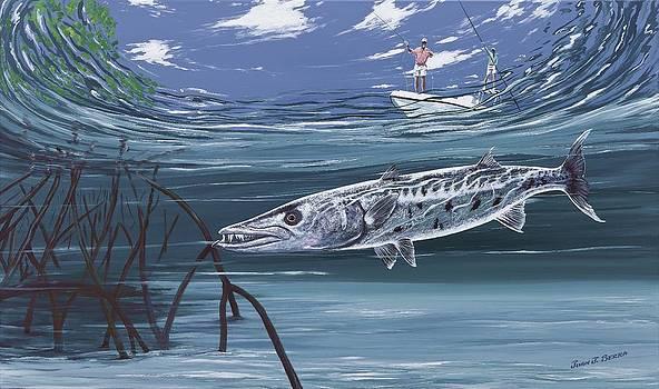 Barracuda in the mangroves by Juan Jose Serra