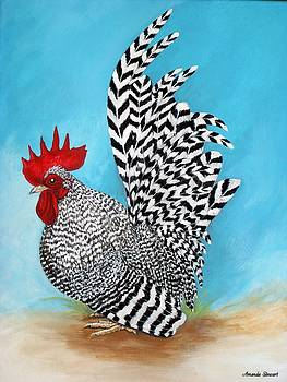 Barred Japanese Bantam Rooster by Amanda Hukill