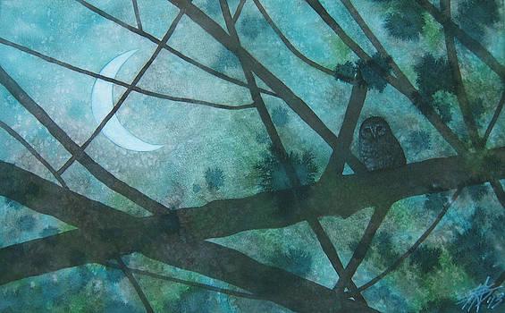 Robin Street-Morris - Barred Owl Moon