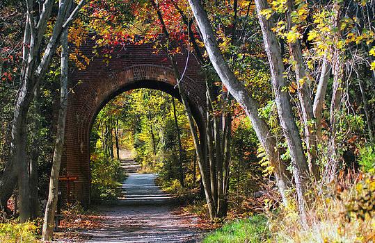 Barrel Bridge by Mary OMalley