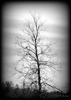 Barren Branches by Terri K Designs