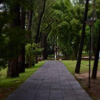 #barueri #br #parque #park #brasil by Eduardo Lemos