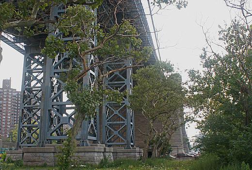 Steve Breslow - Base of the Williamsburg Bridge