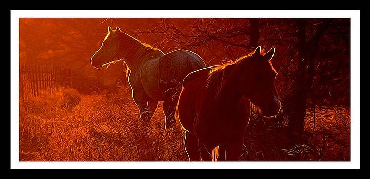 Basking in the Sunset Glow by Shannon Story