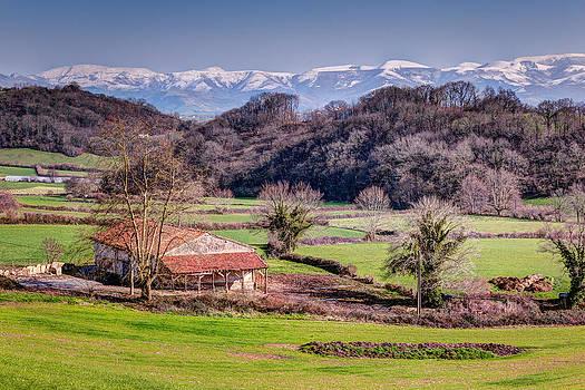 Joshua McDonough - Basque Country