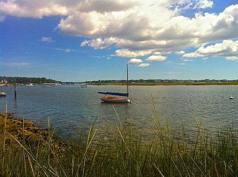 Amazing Jules - Bass River Boat