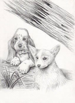 Jeanette K - Basset Hound and  Welsh Corgi