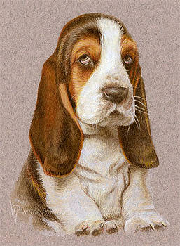 Bassett Hound Puppy Portrait by Victor Powell