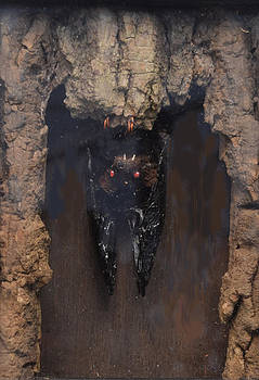Bat in a Cave by R  Allen Swezey