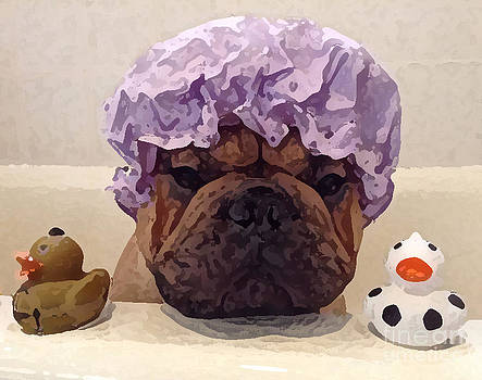 Bath Time - French Bulldog by Dianne Ferrer
