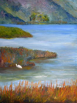 Batiquitos lagoon by Jennifer Richards