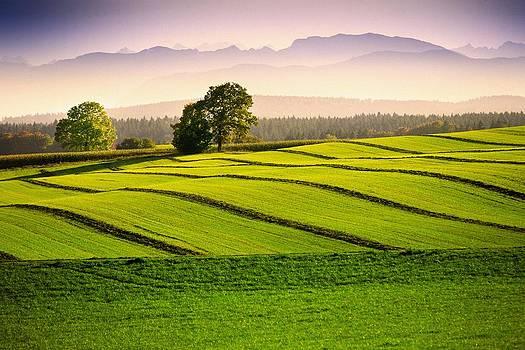 Bavaria by Bjoern Kindler