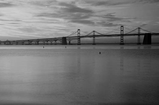 Bay Bridge Bw by Carolyn Stagger Cokley