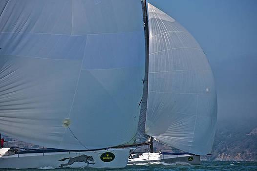 Steven Lapkin - Bay Downwind