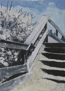 Bay Head Steps by Heather Douglas