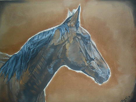 Bay Mare by Darcy Lewis