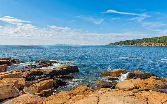 Bay of Renewal by John M Bailey