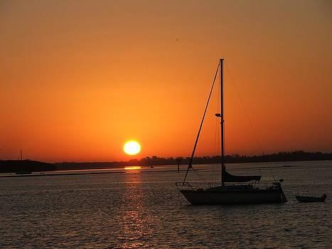 Bay Sunrise by Judy  Waller