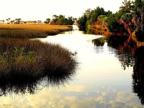 Buzz  Coe - Bayport Canal