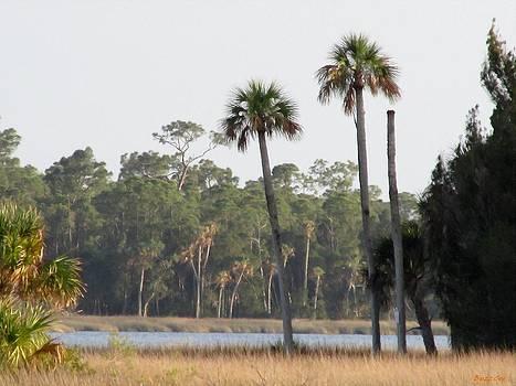 Buzz  Coe - Bayport Landscape I