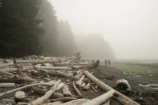 Marilyn Wilson - Into the Fog