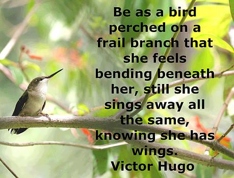 Be As A Bird by April Wietrecki Green