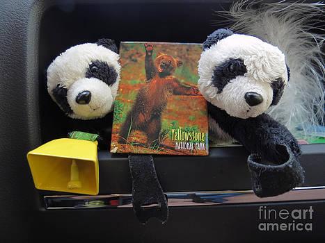 Be Bear Aware. Travelling pandas series by Ausra Huntington nee Paulauskaite