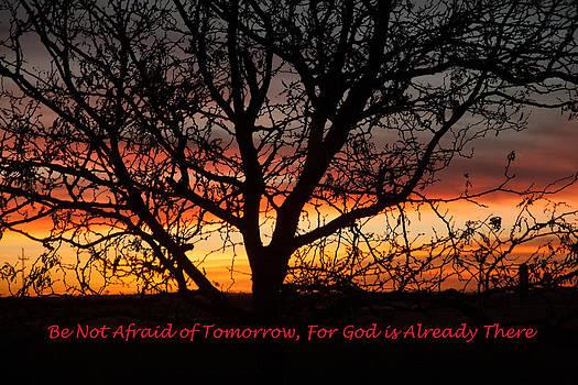 Be Not Afraid by Shirley Heier