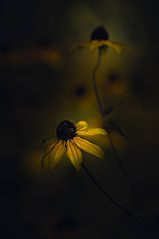 Be Yourself by Paul Barson