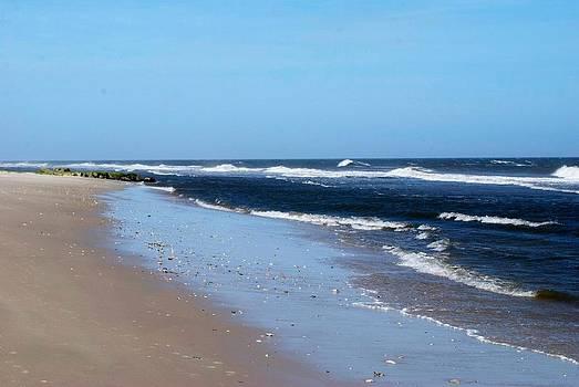 Beach 2 by Gina Patton