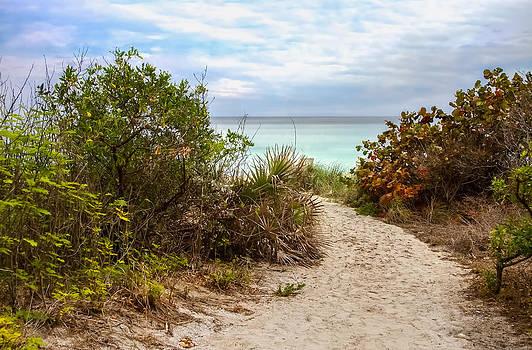 Beach Access by Alina Marin-Bliach