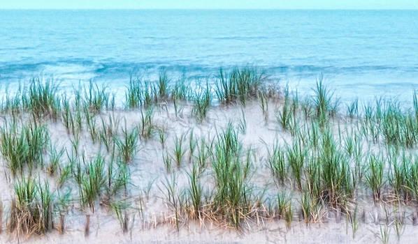 Beach and Grasses by Alina Marin-Bliach