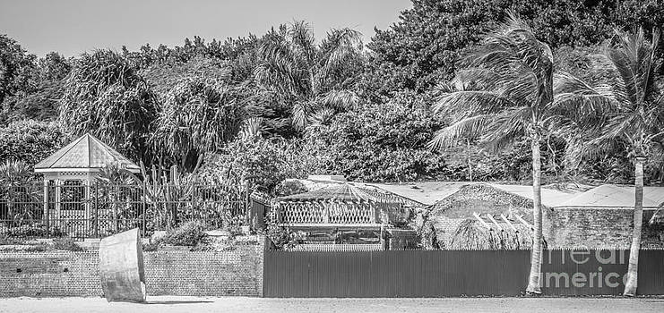 Ian Monk - Beach Art and Key West Garden Club - Key West - Black and White