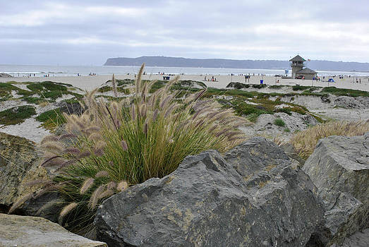 Beach at Coronado Island by Misty Stach
