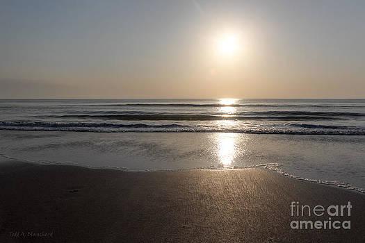 Beach At Sunrise by Todd Blanchard