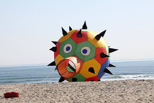 Beach Ball Kite by John Rockwood