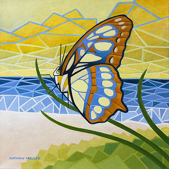 Beach Butterfly by Nathan Miller