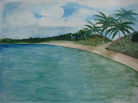 Beach  by Chip Picott