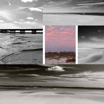 Beach Collage  by AR Annahita