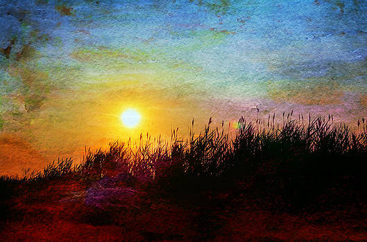 Beach Dune Sunset by Laura Fasulo