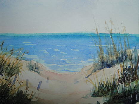 Beach Dunes by Evelyn Cassaday