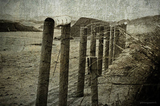 Beach Fence by Penny Roberts