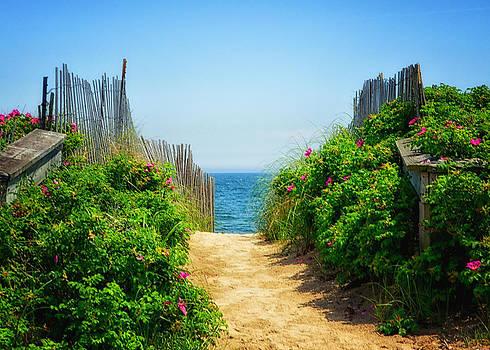Beach Flowers II by Tricia Marchlik
