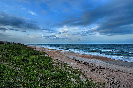 Beach by George Ferreira