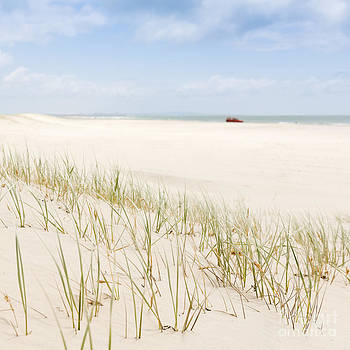 Tim Hester - Beach Grass with 4WD