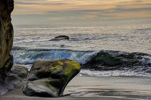 Beach by Greg Amptman
