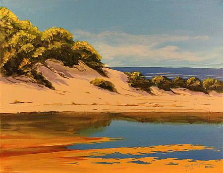 Beach Lagoon by Bob Hasbrook