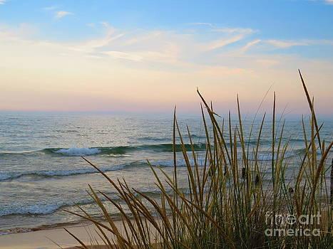 Beach Life by David Lankton