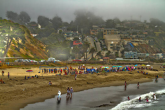 Tom Kelly - Beach Life