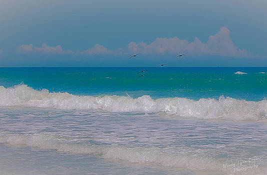 Beach Life by Wendy Lynn Conder